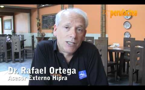 Rafael_Ortega_Perulactea_02