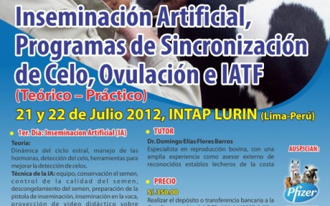 IA_IATF_2012