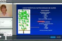 Mira la Videoconferencia sobre Forrajes Conservados de la Ing. Miriam Gallardo