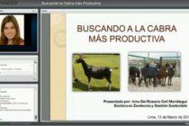 """Mira la Videoconferencia """"Buscando la Cabra más Productiva"""" (Dra. Irma Celi)"""
