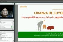 Mira la Videoconferencia sobre el Negocio de Producción de Cuyes (Ing. Lilia Chauca)