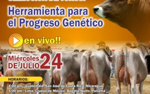 Perulactea EnVivo Miércoles 24 Julio