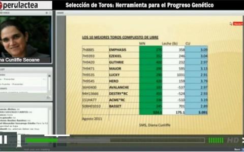 video seleccion de toros 2013