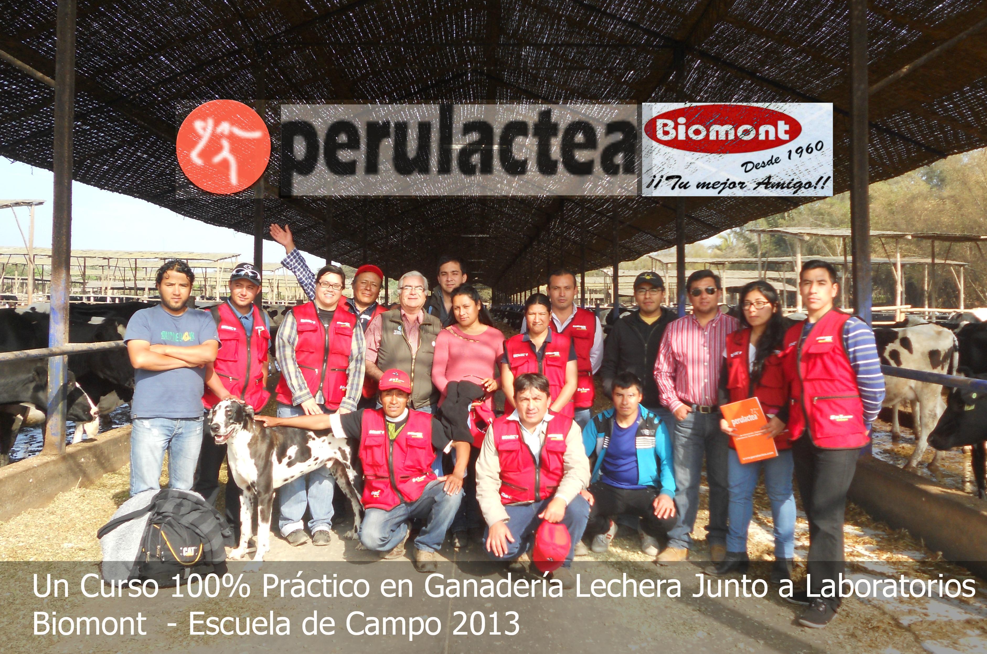 grupo completo Huacho 2013