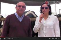 Mira la Invitación Oficial para la II Feria Nacional de Ganado Lechero de la Asociación Holstein del Perú