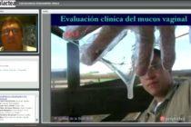 Perulactea EN VIVO: Endometritis Clínica en Vacas Lecheras (Video)