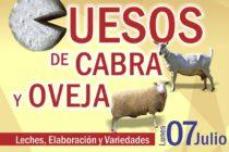 EN VIVO => Quesos de Cabra y Oveja: Leches, Elaboración y Variedades