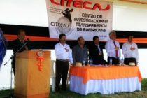 """Entrevista al Dr. Ángel Dávila: """"CITECAJ nace para mejorar la genética y productividad de la ganadería lechera en Cajamarca"""""""