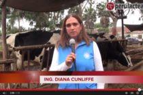 La Ing. Diana Cunliffe los Invita a la Feria Nacional de Ganado Lechero de Raza Hosltein y Brown Swiss