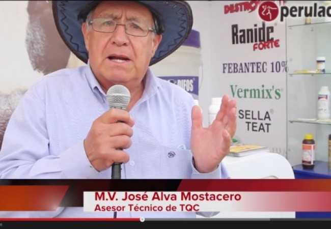 JOse-Alva-Mostacero-TQC