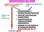 Diagrama deshidratación