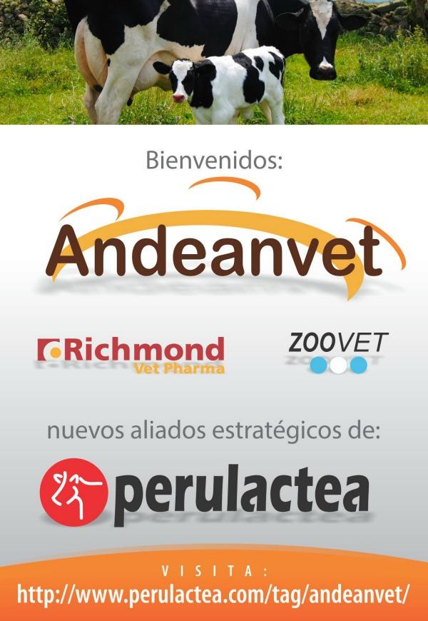 BIENVENIDO ANDEANVET