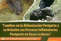 EN VIVO: Cambios en la Alimentación Periparto y su Relación con Procesos Inflamatorios Postparto en Vacas Lecheras