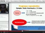 Perulactea EN VIVO IATF