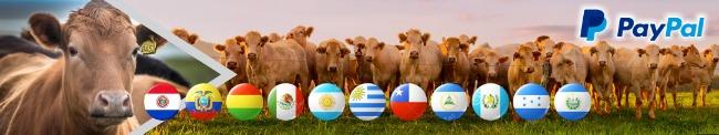 cursos_online_ganaderia_para_toda_latinoamerica