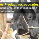 Índices Productivos pecuarios: Tema pendiente en la investigación científica peruana