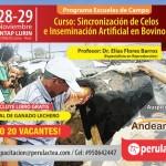 Curso Práctico: Sincronización de Celos e Inseminación Artificial en Bovinos