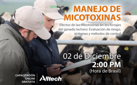 Webinar-Micotoxinas-Facebook-1200x900-1024x768
