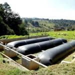 BioBolsa: Sistema de Biodigestores se Popularizan en México para Generar Energía en Granjas