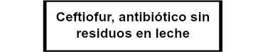 Ceftiofur antibiótico