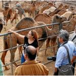 El Poder de la Leche de Camella