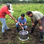 Ganadería Responsable con el Medio Ambiente: Monitorean Óxido Nitroso en Pasturas de Costa Rica