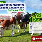Sorteo de beca: Curso On Line: Formulación de Raciones en Ganado Lechero con Software NRC
