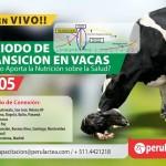 EN VIVO – Periodo de Transición en Vacas: ¿Cuánto Aporta la Nutrición sobre la Salud?