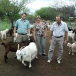 Produciendo Leche y Carne Caprina en el Noreste Argentino