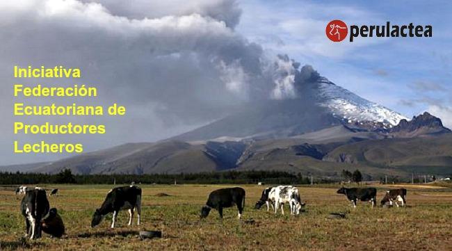 Federacion_Ecuatoriana_de_Productores_Lecheros