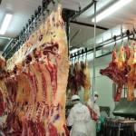 Mesa de la Carne: Estrategia Paraguaya para llegar a Nuevos Mercados