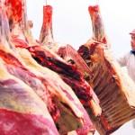Residuos de Antiparasitario Etión Bloquea Negocios de Carne Uruguaya en EE.UU