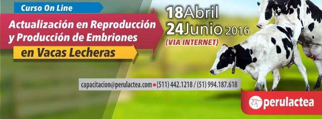 reproduccion_y_produccion_de_embriones_en_vacas_lecheras