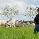 Costa Rica: Empresa Ganadera Recibe Certificación por Contrarrestar la Contaminación