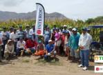 Maiz-Hibrido-Simple-Tropi-101-Interoc-Peru-Sanidad-Grano-Fuerte-Estructura-y-Fuerte-sistema-radicular