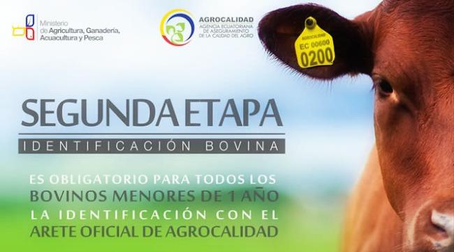 Programa_de_trazabilidad_bovina_Ecuador