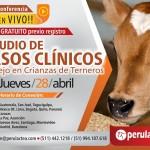 EN VIVO: Estudio de Casos Clínicos y Manejo en Crianzas de Terneros