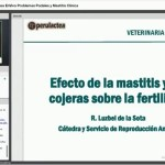 Videoclase: Problemas Podales y Mastitis Clínica, Impacto en la Reproducción Bovina