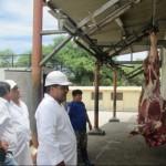 Buscan Erradicar la Tuberculosis Bovina en la Región Piura