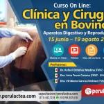 Curso On Line: Clínica y Cirugía en Bovinos