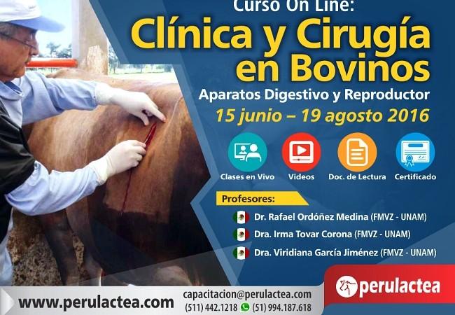 Clinica_y_Cirugia_de_Bovinos