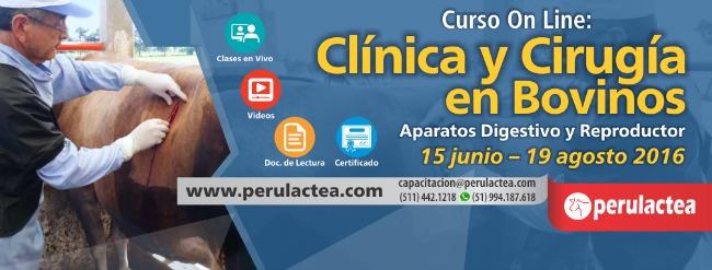 Curso_Clinica_y_Cirugia_de_Bovinos