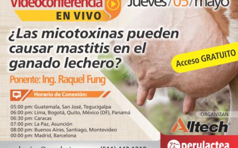 En Vivo Raquel Fung-Mycosorb-las-micotoxinas pueden causar mastitis-adsorbente-de-micotoxinas-para ganaderia