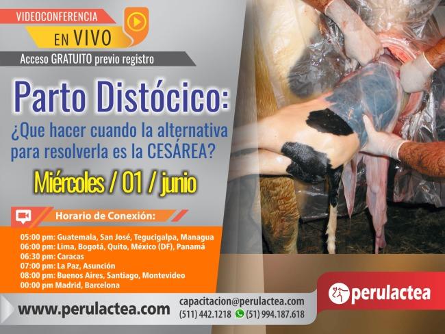 Parto_Distocico_en_Vaca