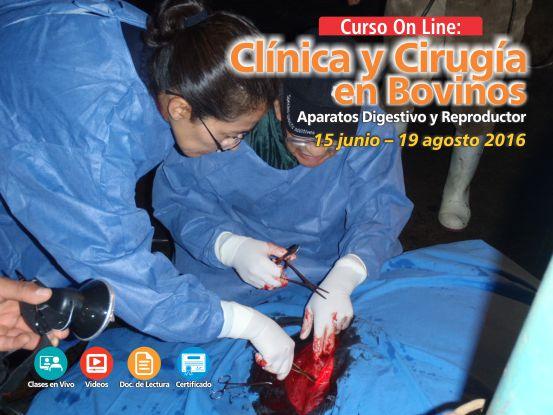 cirugia_en_ganado_bovino