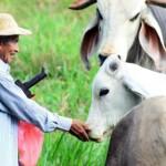 Panamá alberga la Sexta Reunión de la Agenda Global de Ganadería Sostenible