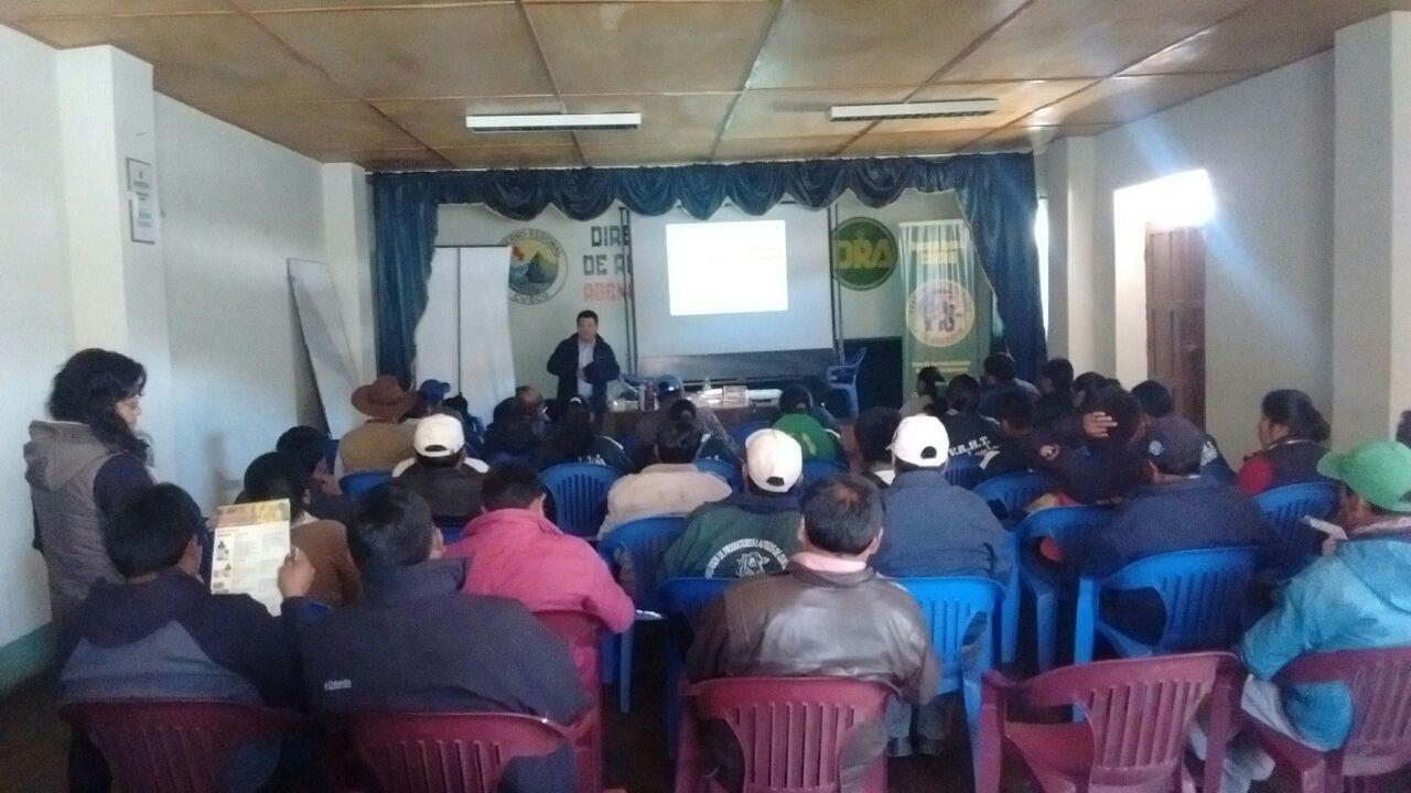 Línea Ganadera Veterinaria de Globalvet en la zona de Sicuani 04