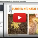 Videoclase Diarrea: La Gran Amenaza para los Terneros