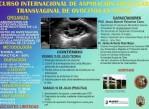 aspiracion_folicular_transvaginal_ovocitos_en_vacas