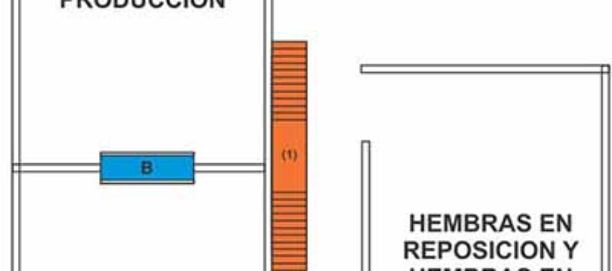 Instalaciones para una Buena Producción Caprína